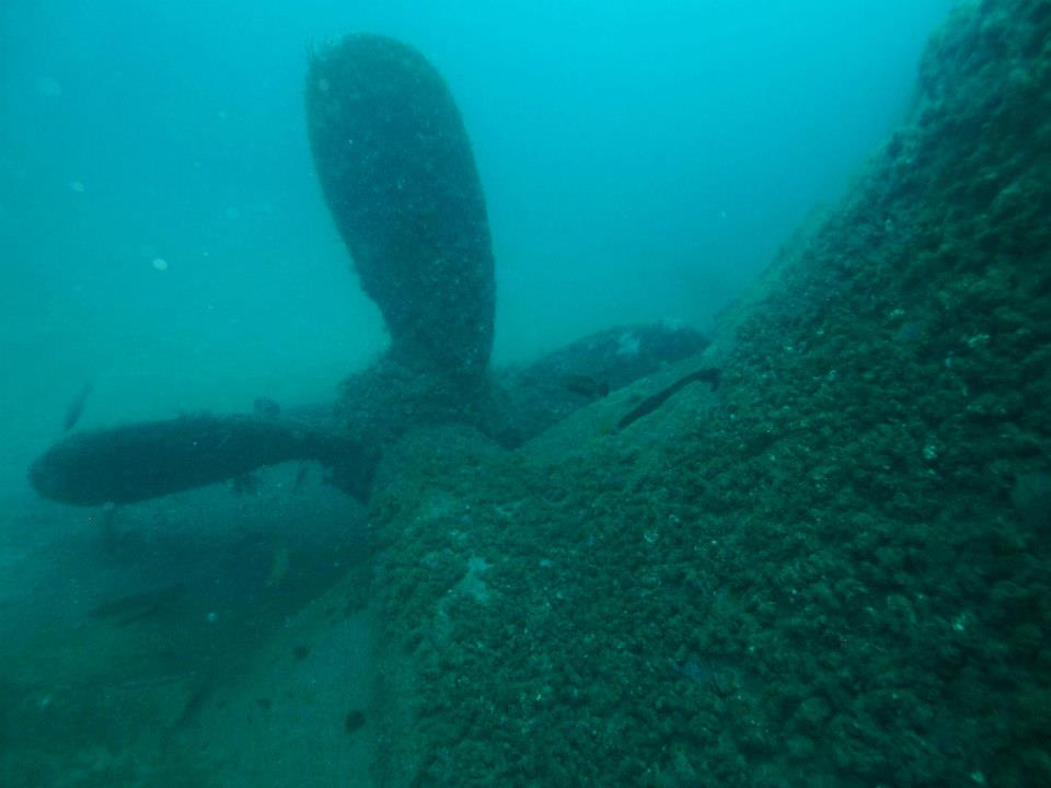 View of the Proteus propeller, each blade is about ten feet long. Photo taken May 2013 by Diver Marc Corbett., Water vis is around 65 feet.