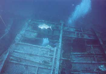 Manuela midships section is upside down.  Dave Sommers Dive Hatteras Photo