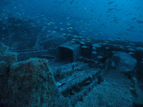 Manuela has a large debris field.  This photo is near the bow.  Photo by Marc Corbett, October 2013.