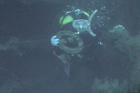 Treasure from the deep.  Dive Hatteras photo